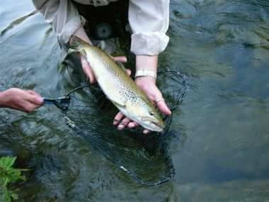 Pêche au Moulin de la Malène